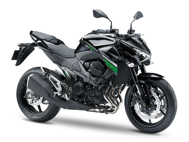 KAWASAKI Z800 E 2013-2016: cartridges for fork