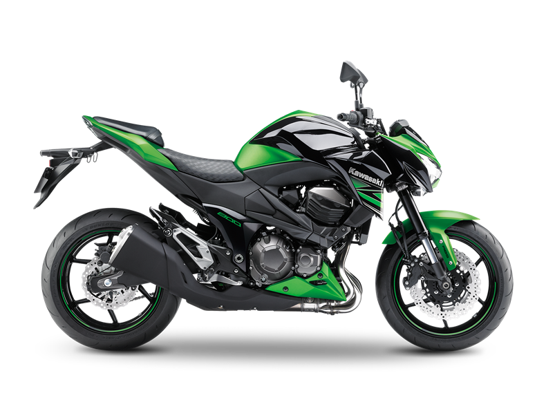 KAWASAKI Z800 2013-2016: cartridges for fork